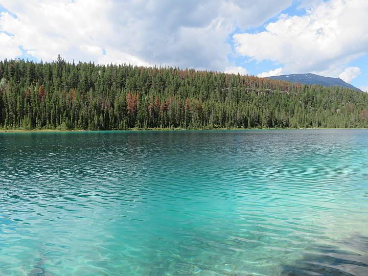 Pristine turquoise glacier lake at Jasper's Valley of the Five Lakes trail