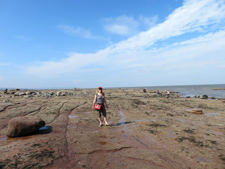 Standing on the ocean floor at Burntcoat Head Park on Bay of Fundy