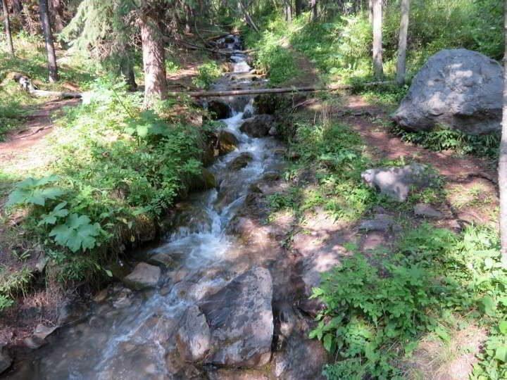 Troll Falls Creek in Kananaskis Country Alberta Canada