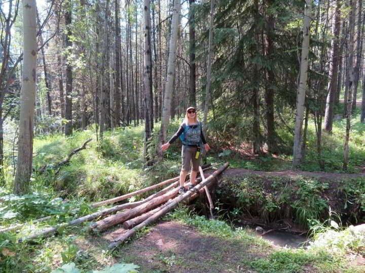 Walking across the log bridge at Troll Falls hiking path