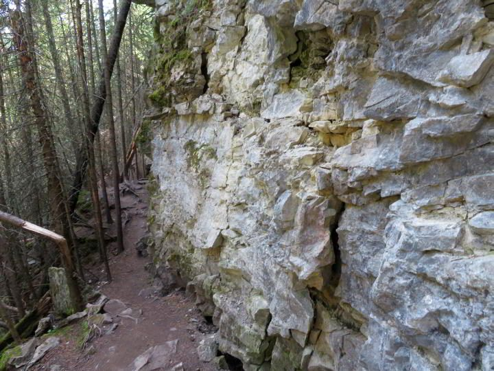Narrow pathway of Troll Falls hiking trail in between the jagged rock and forested area