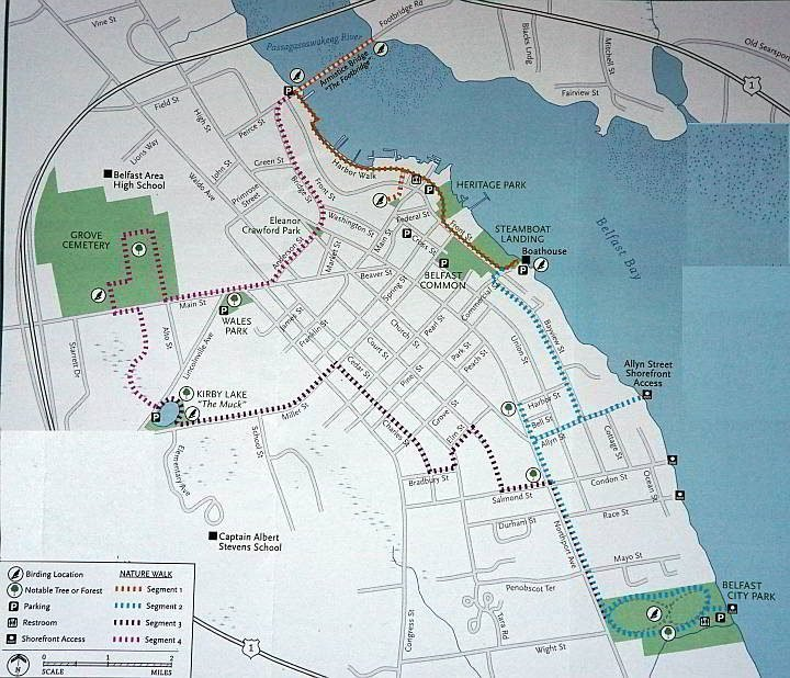 Belfast Maine In-Town Nature Trail map with 4 sections making a 5-mile loop