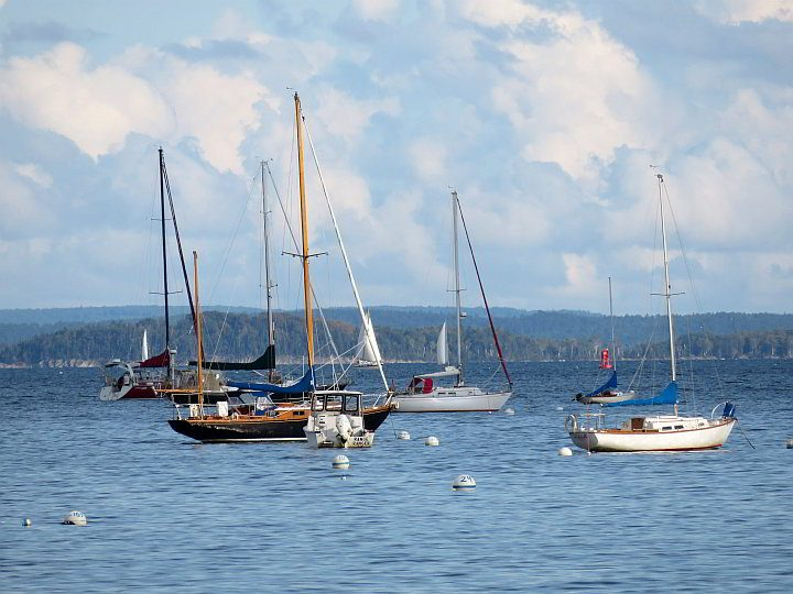 Beautiful view of the boats in Belfast Harbor Maine