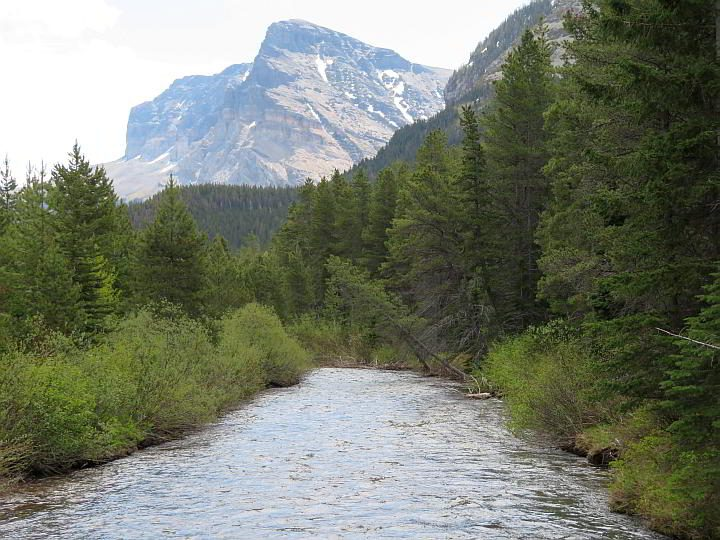 Beautiful mountain view and a creek along the Swiftcurrent hiking trail in East Glacier MT