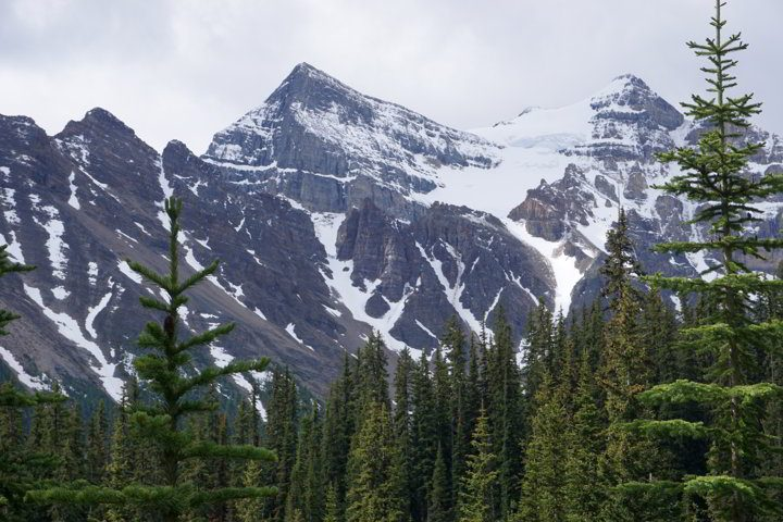 Majestic Canadian Rocky Mountains are the backdrop at the Lake Agnes tea house hike summit