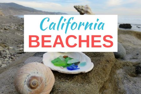 Carpinteria Beaches 7 Remarkable Spots for a Day at the Beach