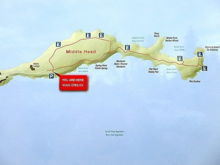 Middle Head Trail map shows a lovely coastal route on this peninsula in Cape Breton