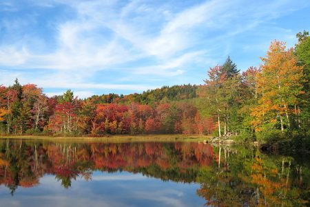 Fall Foliage Maine Road Trip