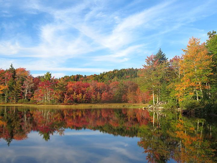 New England fall foliage reflection in the water - a beautiful mirror image