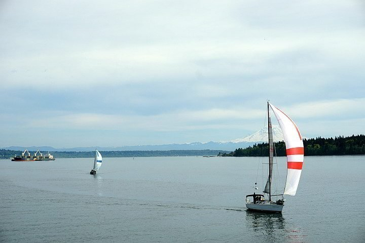 Sailboats with Mount Rainier in the distance