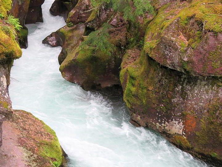 Avalanche Creek at Trail of Cedars beautiful walk through the forest in Glacier park