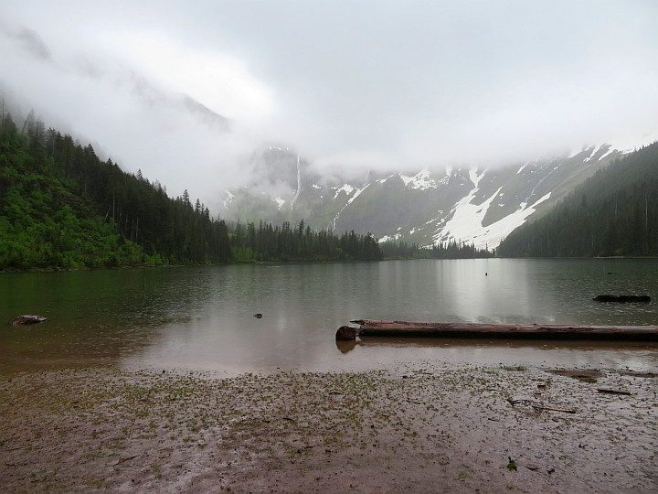 Avalanche Lake Trail on a rainy day with low lying clouds at Glacier NP