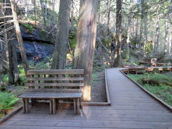 Boardwalk and wooden bench at Trail of Cedars in Glacier National Park