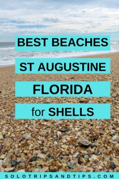 Best beaches St Augustine Florida for shells