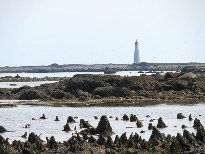 Cape Sable Lighthouse is the tallest in Nova Scotia at 31 m (101 ft)