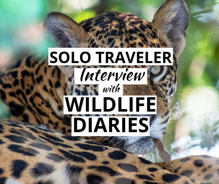 Solo Traveler Interview with The Wildlife Diaries
