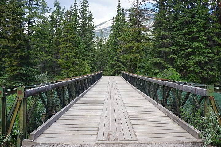 6th bridge and a backdrop of evergreen trees at Maligne Canyon hike
