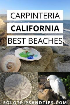 Carpinteria California Best Beaches
