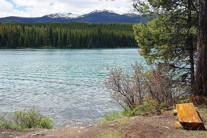 Lakeside bench at Maligne Lake Jasper is the perfect picnic spot