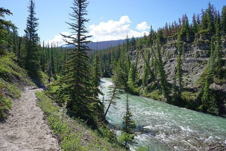 Hiking alongside Maligne River near 5th bridge of Maligne Canyon trail