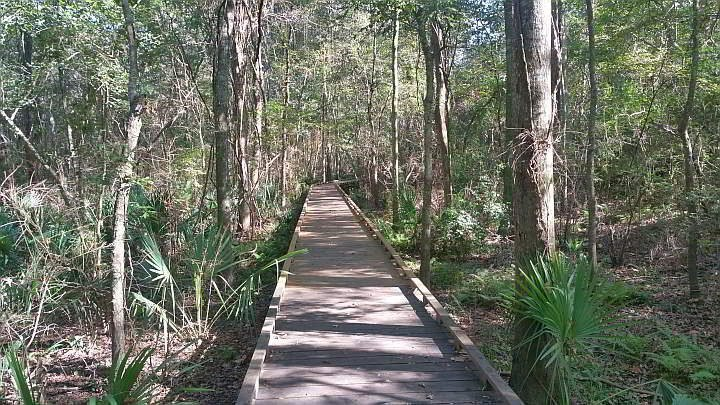 Boardwalk nature trail at Acadian Nature Station in Lafayette LA