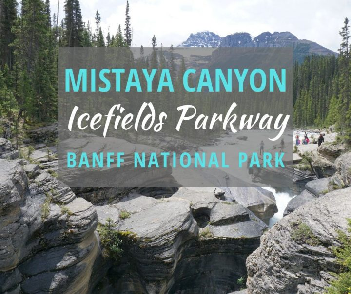 Mistaya Canyon Icefields Parkway Banff National Park
