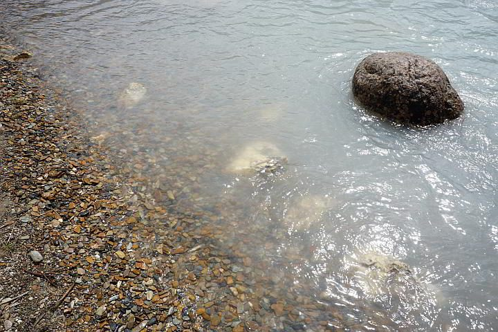 Pebbles at shoreline Kicking Horse River