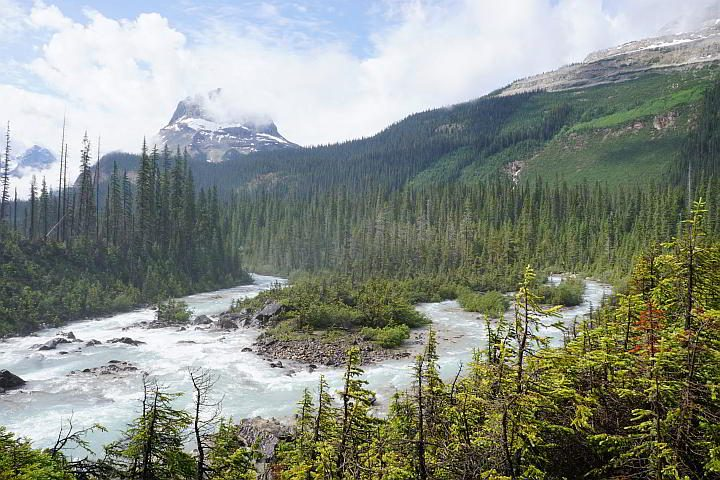 View from Takakkaw Falls Yoho