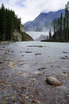 View from across the Kicking Horse River to Wapta Falls