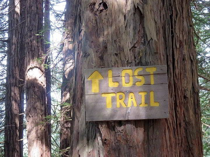 Muir Woods Lost Trail sign