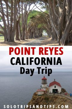 Point Reyes California Day Trip