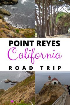 Point Reyes California Road Trip