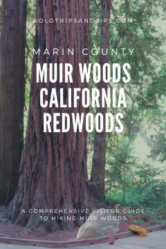 Marin County Muir Woods California Redwoods Hiking Guide