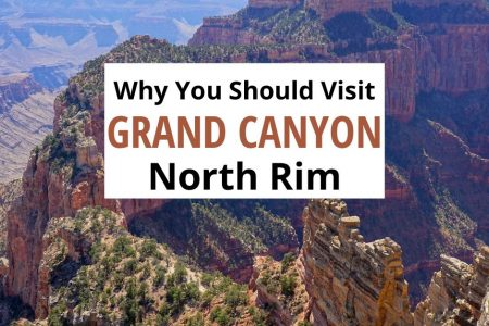 Grand Canyon North Rim Day Trip
