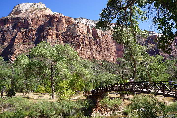 One of the easy hikes at Zion is Lower Emerald Pool Trail Zion