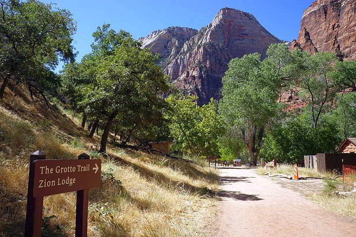 Grotto Trail leads to Zion Lodge