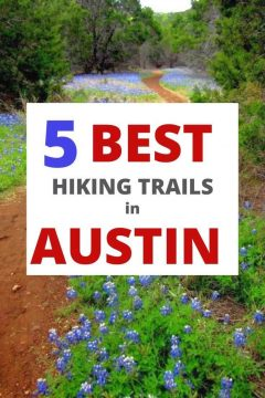 5 Best Hiking Trails in Austin