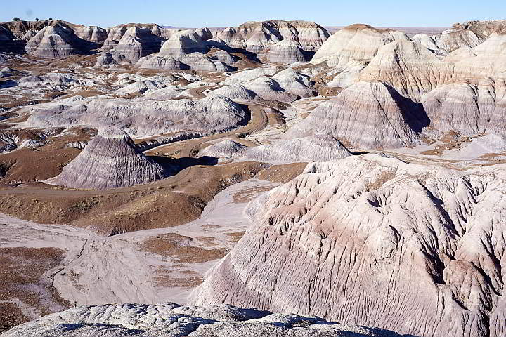 Petrified Forest Blue Mesa Badlands
