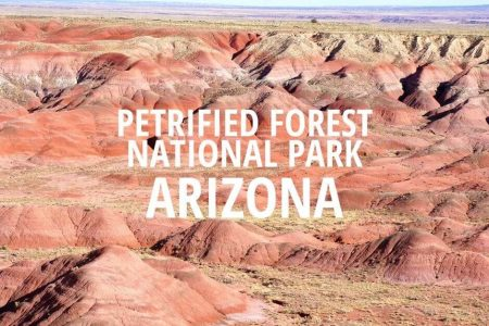 Petrified Forest National Park Arizona in One Day