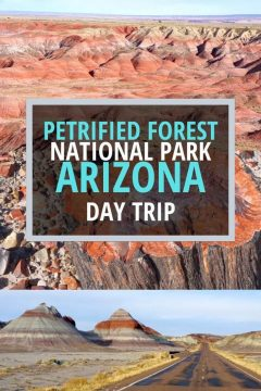 Petrified Forest National Park Arizona Day Trip