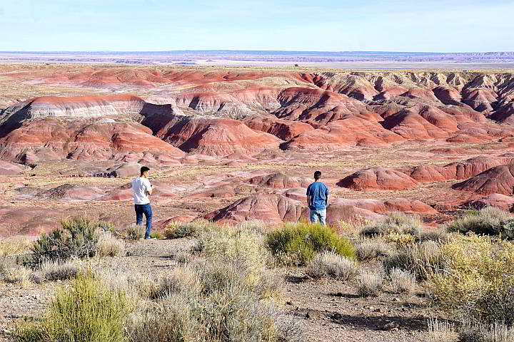 Tourists at Painted Desert