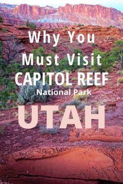 Why You Must Visit Capitol Reef National Park Utah