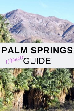 Palm Springs Ultimate Guide