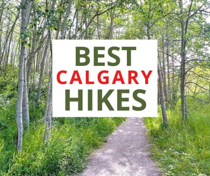 Best Calgary Hikes