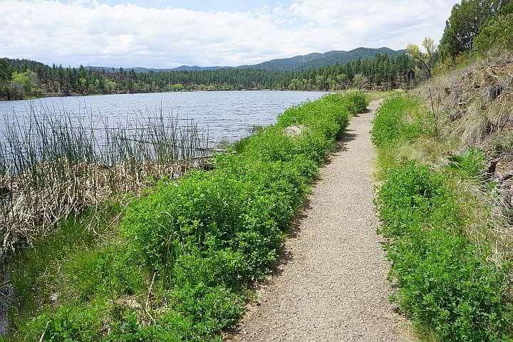 Lakeshore trail paved side at Lynx Lake