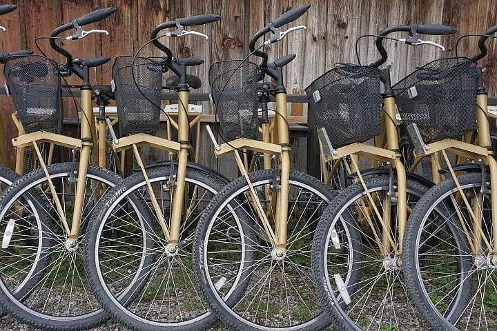 Bike rentals Golden British Columbia