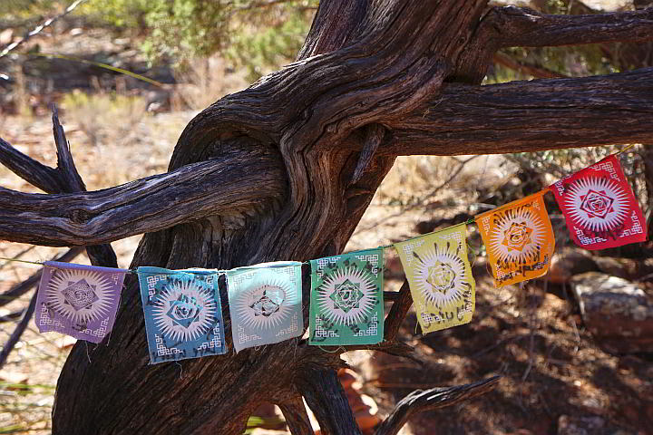Colorful prayer flags on a tree