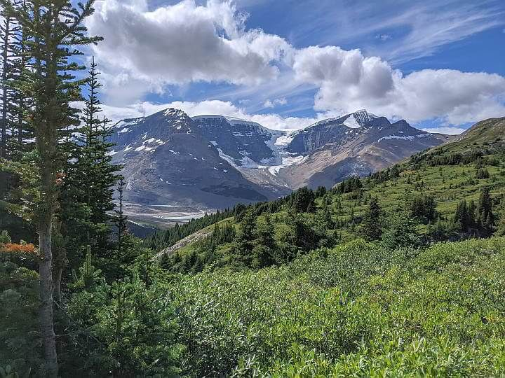 Rocky Mountains and meadows from Wilcox Pass Trail