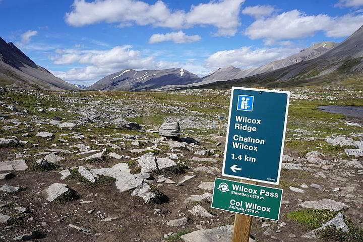 Wilcox Ridge sign at Wilcox Pass Trail