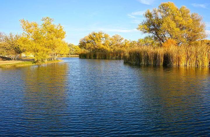 Arizona fall colors along a lagoon